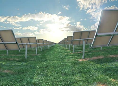 JA Solar To Supply 70 MW Of Modules For Australia's Moree Solar Farm