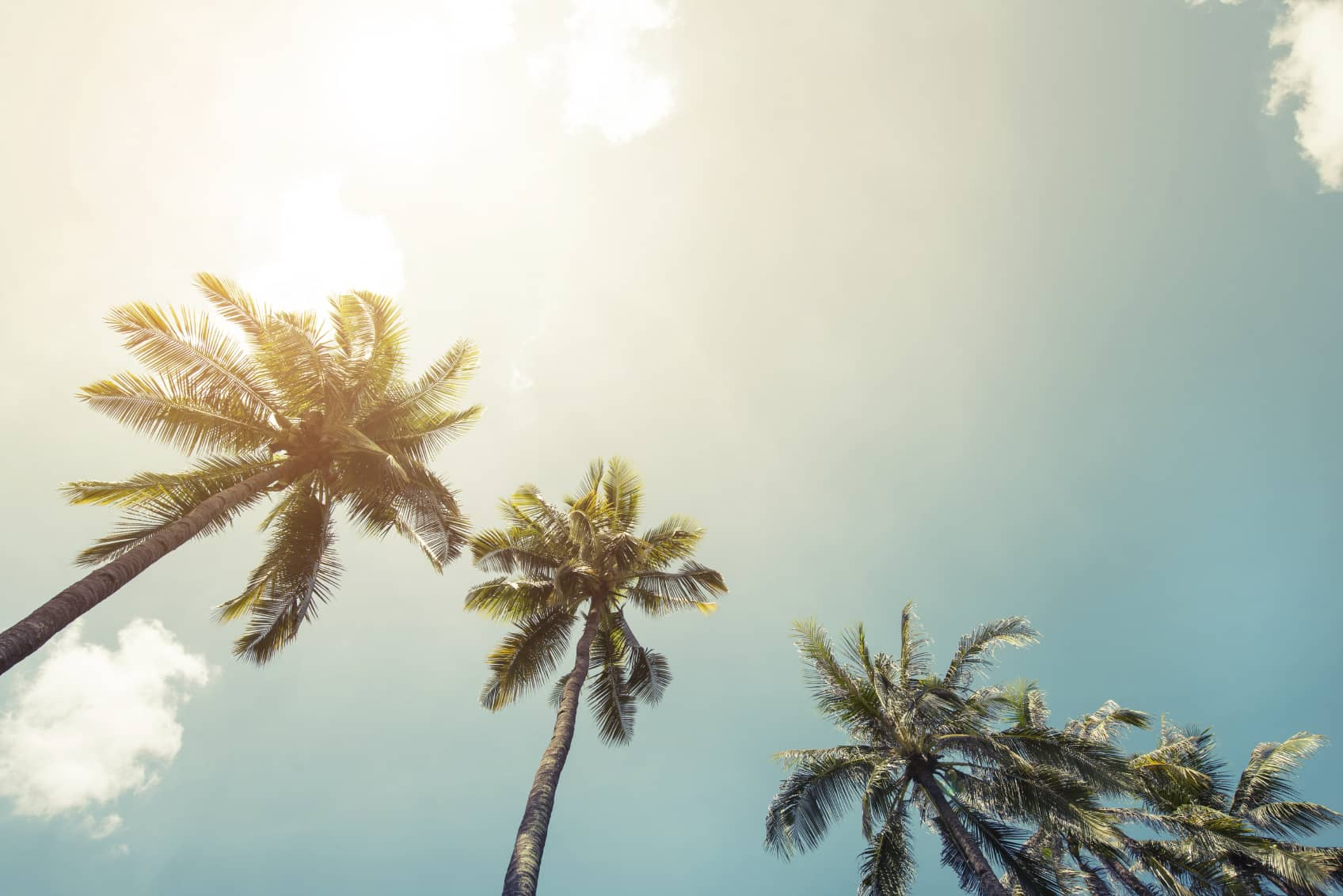 iStock_000082486771_Medium HECO Submits Plan For Hawaii To Meet 100% Renewables Mandate