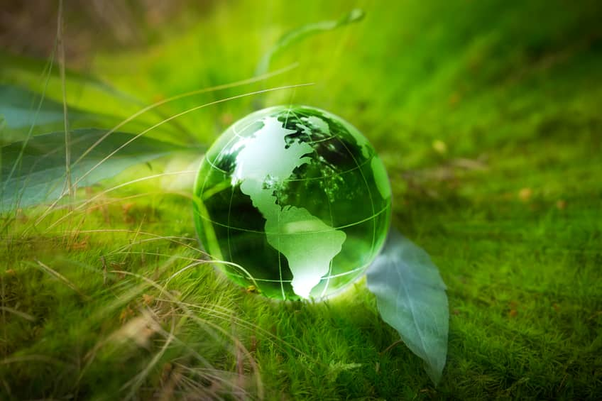 iStock_79391607_SMALL Paris Agreement Enters Into Force As World Prepares For COP22