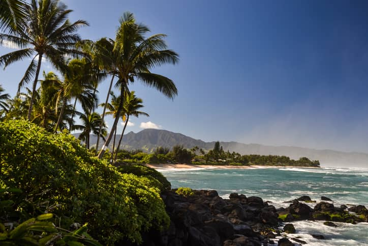 iStock-509169758 EnSync Energy Signs PPA For Solar+Storage Project In Hawaii