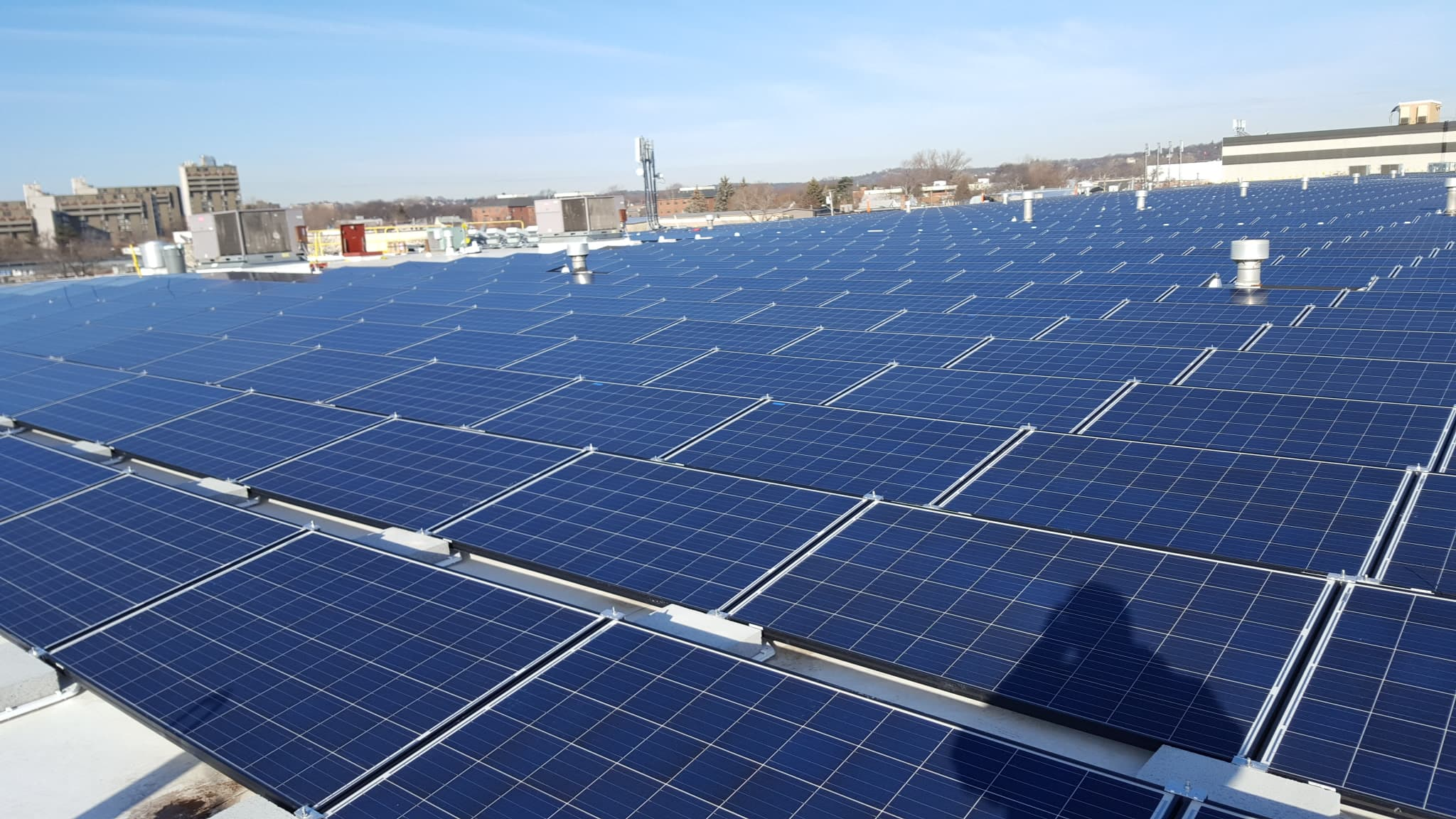 Accadia Accardi Foods Goes Green With Rooftop Solar