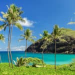 NRG Revives SunEdison Solar Projects In Hawaii