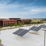 Envision Solar Completes First Solar Tree Installation In Florida