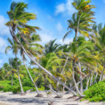 Ideal Power Supplying Tech For Island Business' Hybrid Microgrid