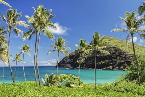 hawaii Hawaiian Electric Says Planned Grid Upgrades Could Boost Rooftop Solar