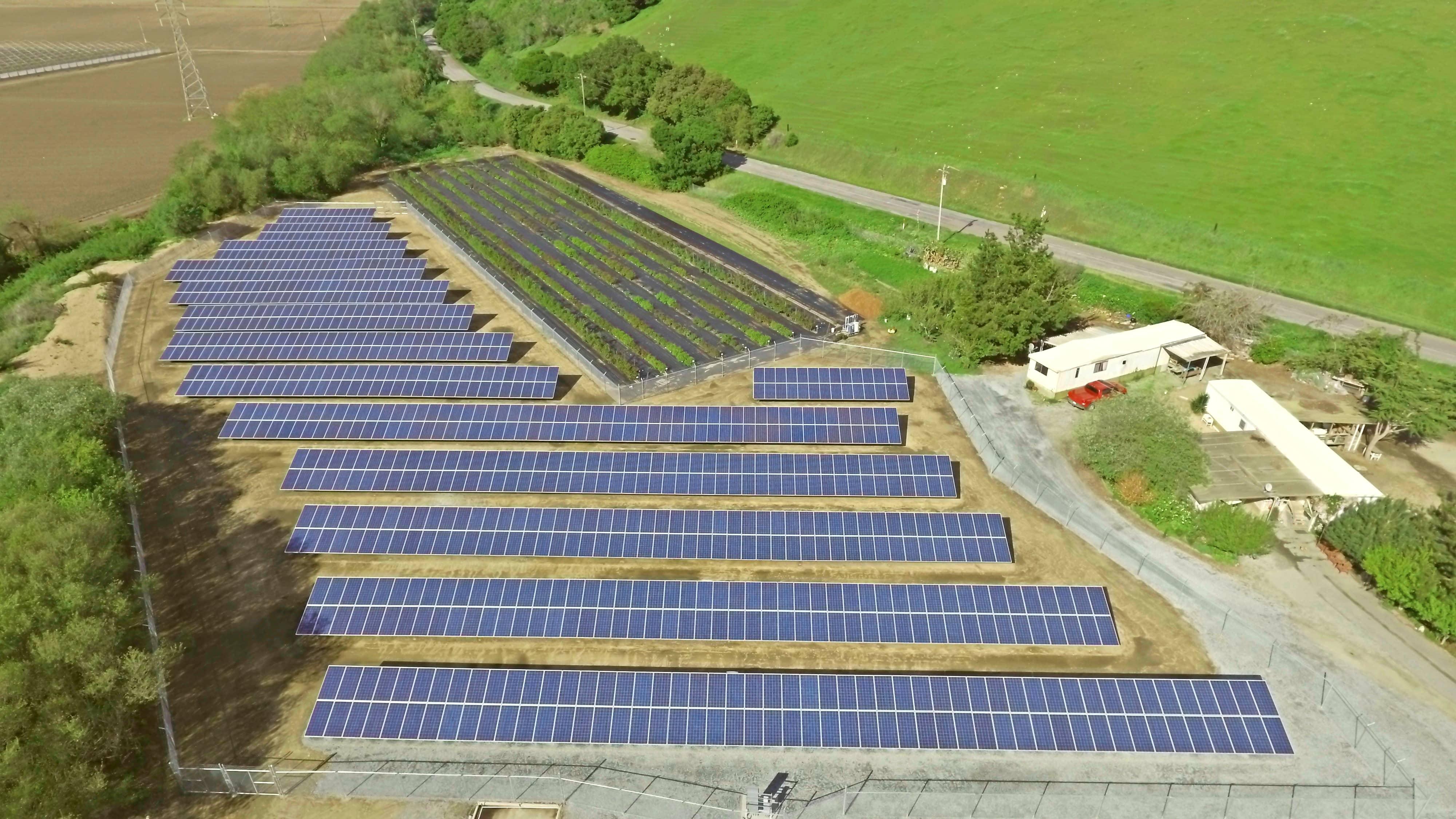 3836641 California Floral Company Goes Solar, Expects Savings