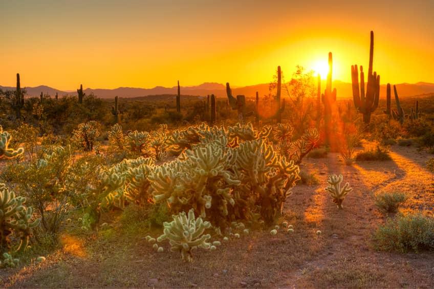 iStock_77925699_SMALL Vasari Energy Buys Arizona Land For 68 MW Solar Project