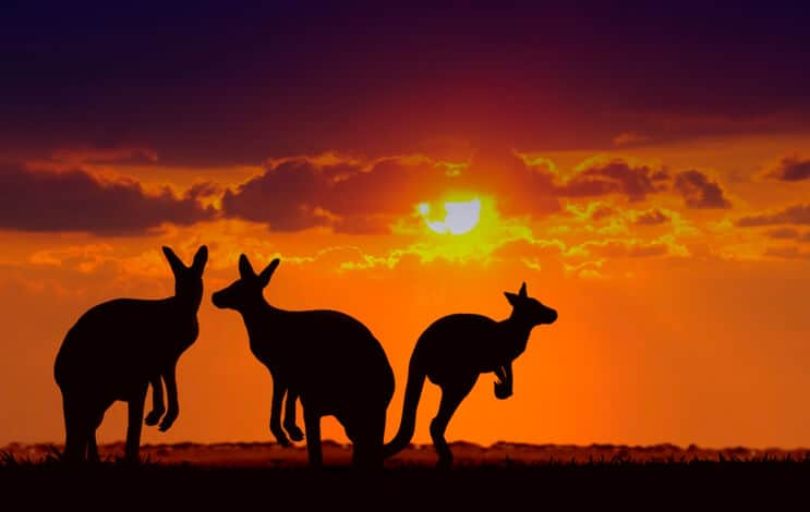 iStock-147514771 First Solar Adds To Its Australian Project Portfolio